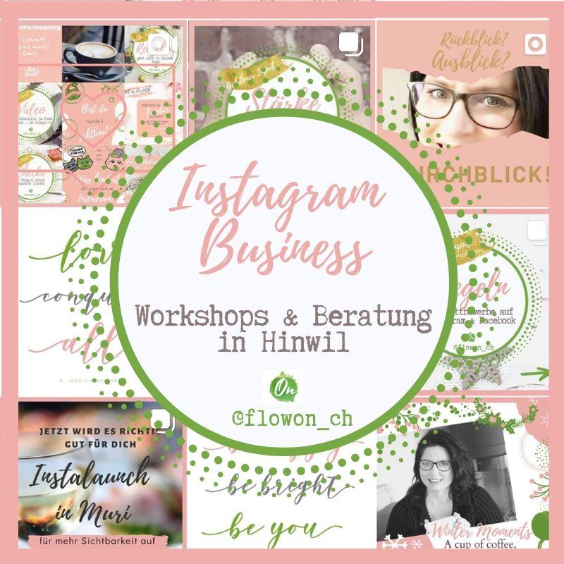 Instagram Business Workshop & Beratung bei FlowOn Marketing in Hinwil